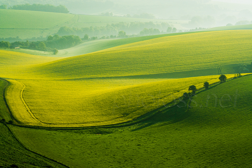 South Downs Photography.