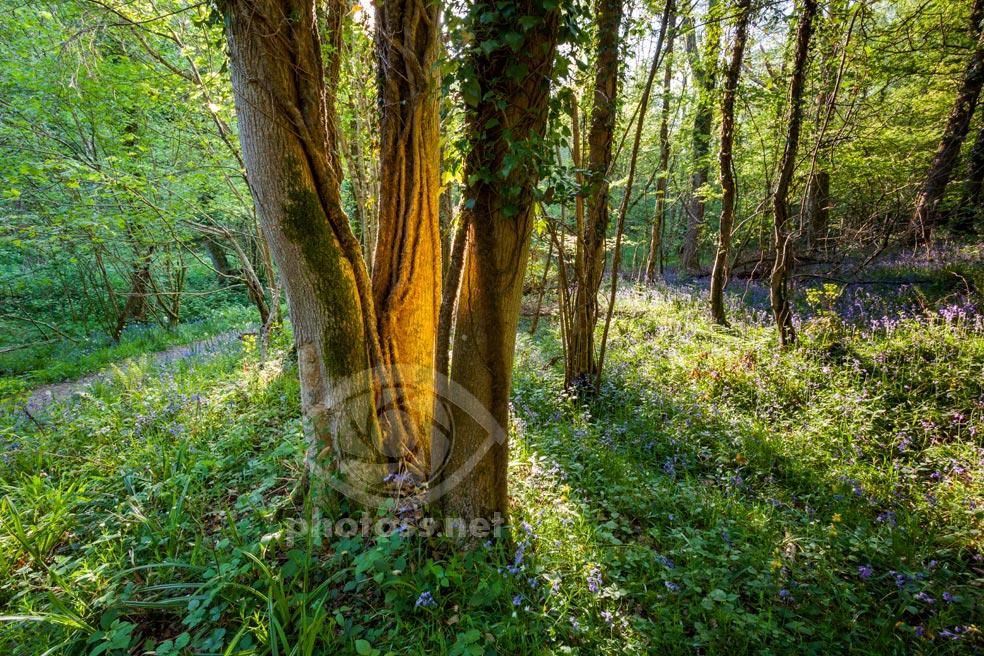 Reflected Light Magic. Slawek Staszcuzk Photography.
