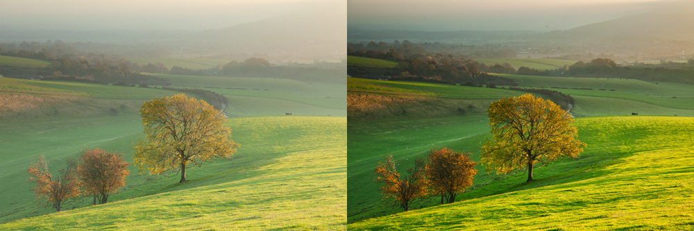 Luminar 4 before and after comparison.