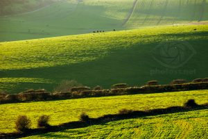 November on the South Downs near Brighton, West Sussex
