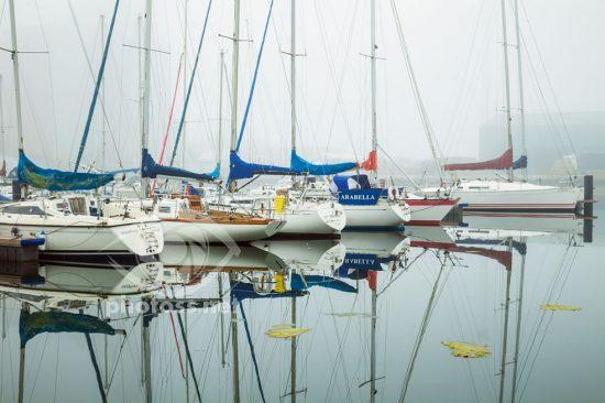 Foggy morning at Shoreham Port